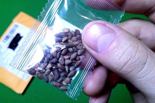 семена японской сакуры