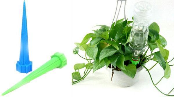 Как организовать полив цветов во время отпуска Дом 33