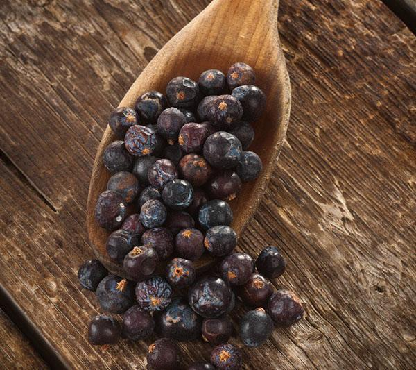 сушенные ягоды можжевельника