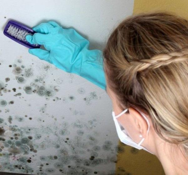 медный купорос против грибка на стене