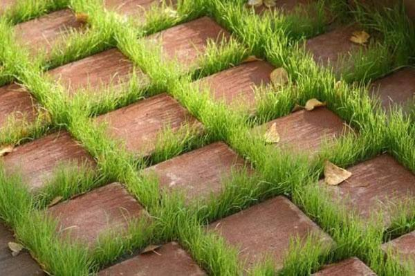 тротуарная плитка с зазорами из травы