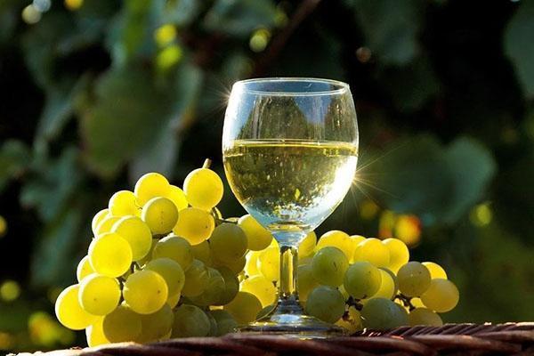 белое виноградное вино
