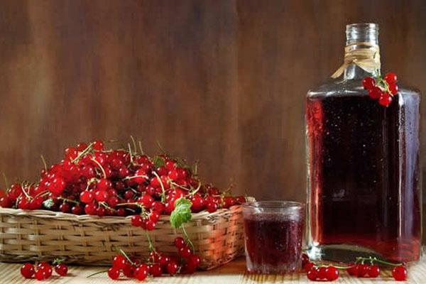 Как сделать вино из черной смородины в домашних условиях рецепт фото