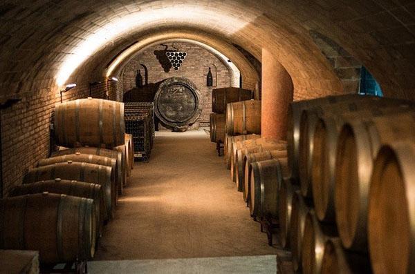 хранение вина в погребе