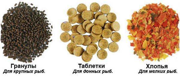 сухой корм для разных видов рыб