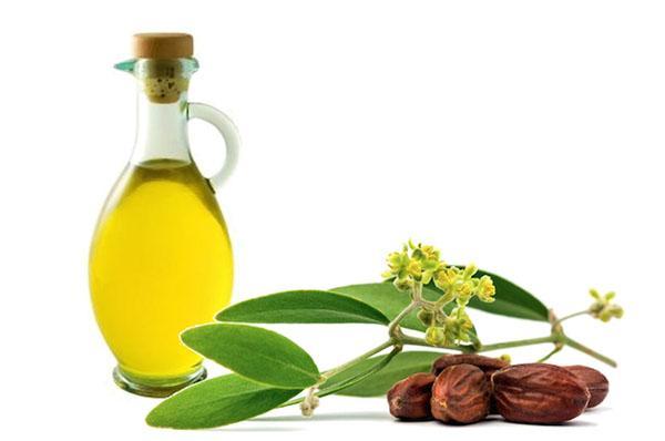 уникальные свойства масла жожоба