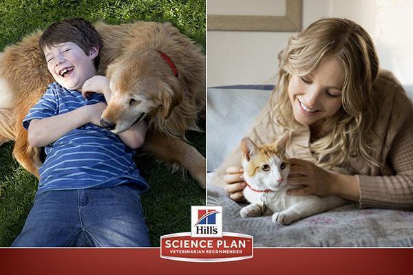 корм Хиллс для кошек и собак