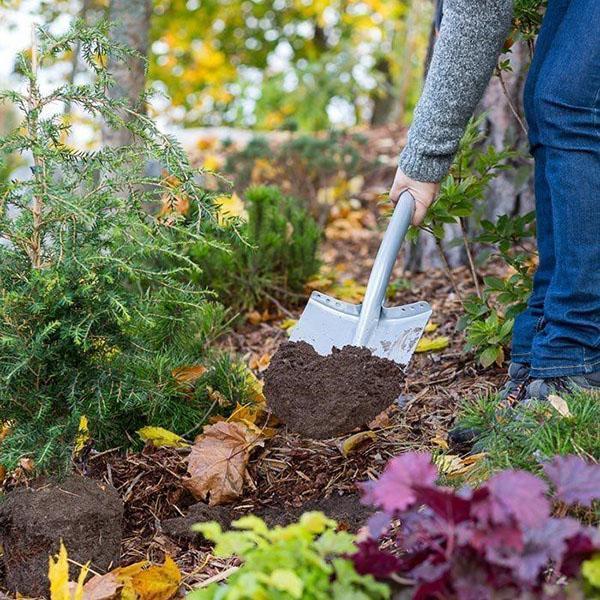 Осеннее удобрение для деревьев и кустов