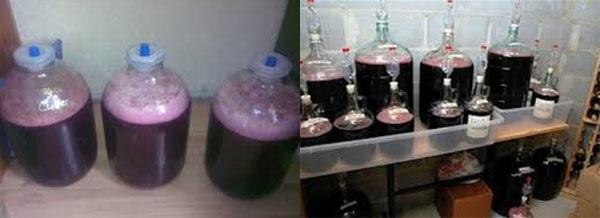 процесс брожения вишневого вина