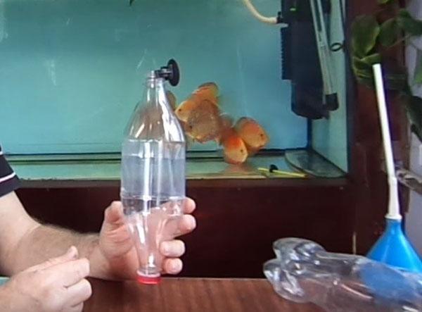 инкубатор для икры рыбок