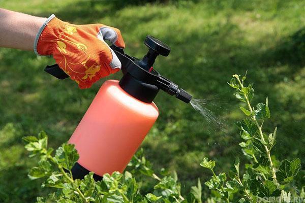 обработка растений актелликом