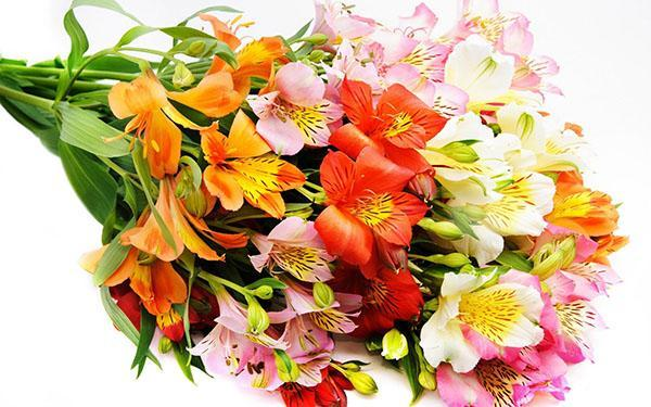 Доставка цветов и букетов по Москве от Флёр де Ви