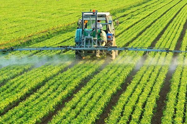 обработка поля инсектицидом борей