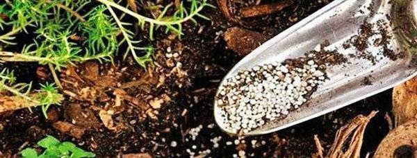 способ известкования почвы