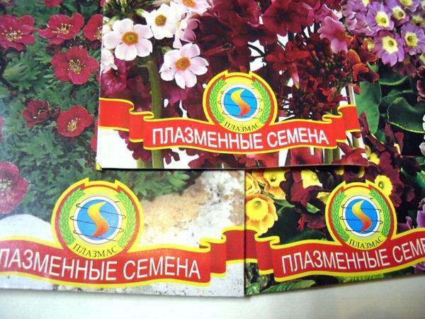 семена Агрофирмы ПЛАЗМАС
