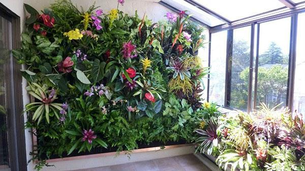 живая стена из цветущих растений