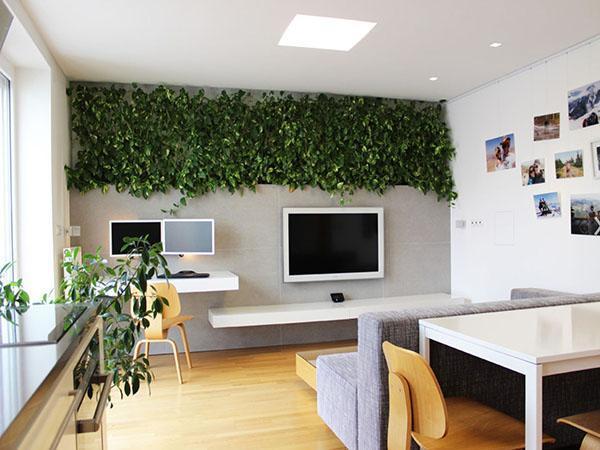 зеленый декор стены