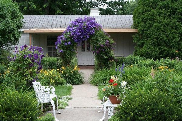 садовая арка для клематиса