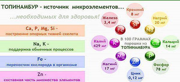 полезные свойства топинамбура
