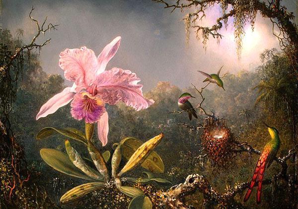 орхидея из древних легенд