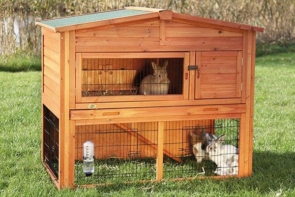 Вольеры для кроликов дома своими руками 35