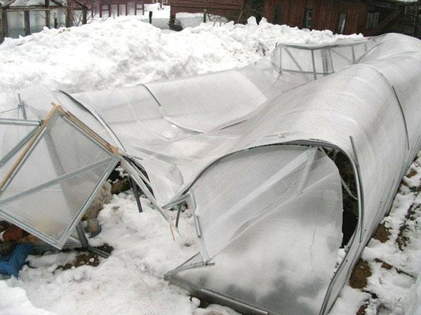 завал теплицы от тяжести снега
