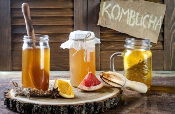 полезный напиток из чайного гриба