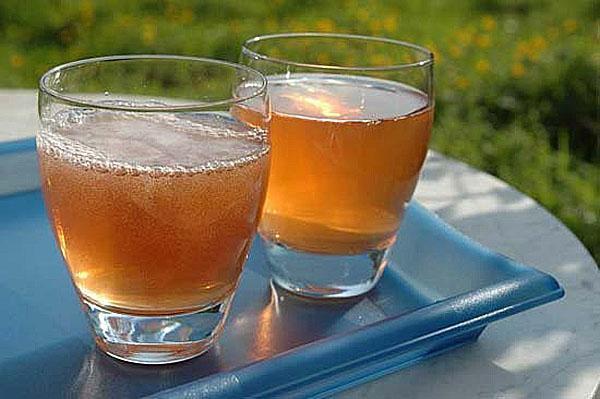 полезный для здоровья чайный гриб