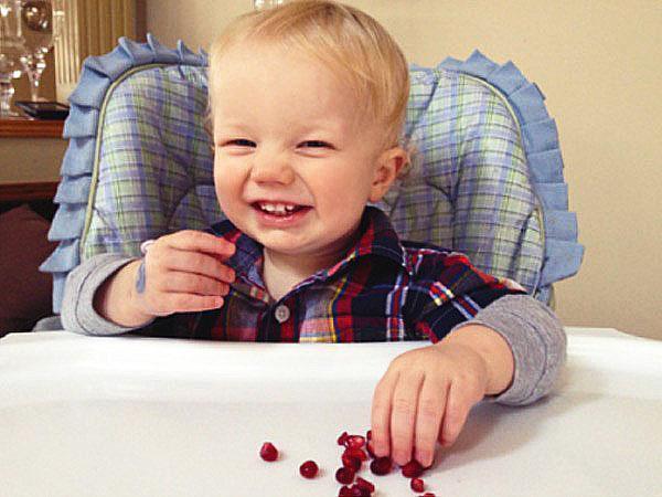 малышам можно гранат в умеренных количествах