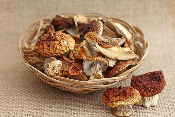 белые грибы моем