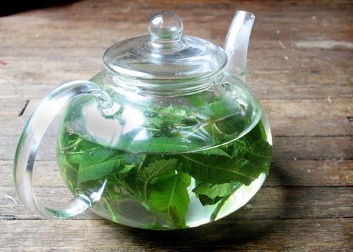 вербеновый чай