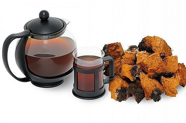 чай из гриба чага