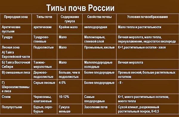 типы почв России