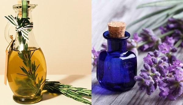 масло розмарина и масло лаванды