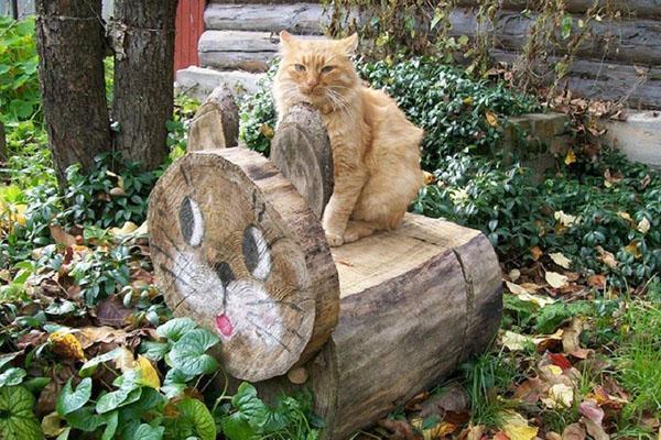 лавка кот