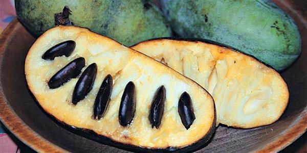 спелые плоды бананового дерева