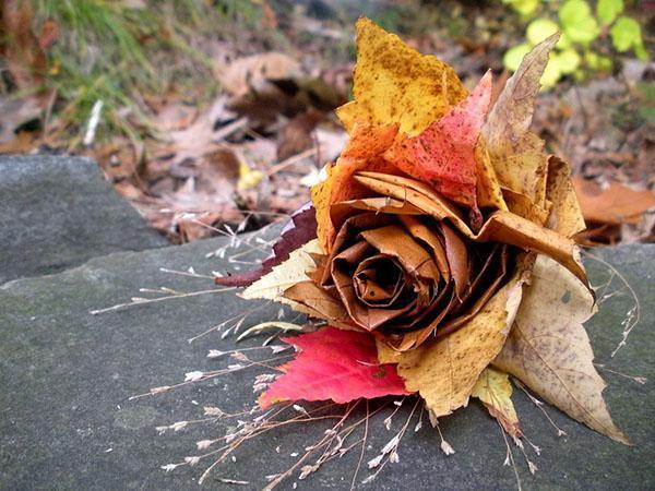 роза из листьев