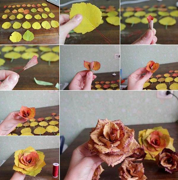 раскрытые бутоны роз