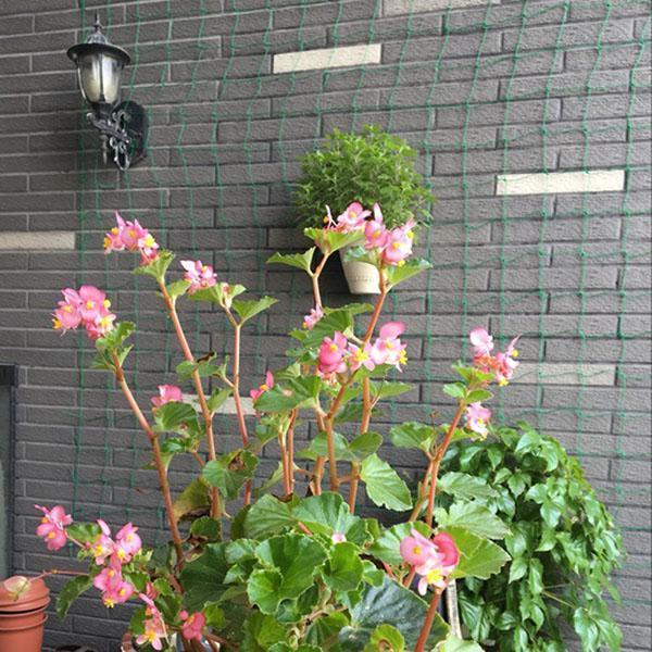 сетка для вьющихся растений из Китая