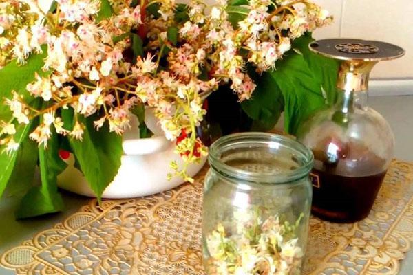 настой из цветов конского каштана