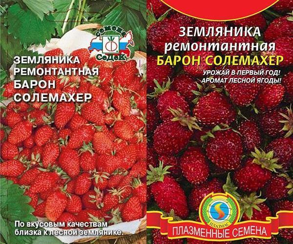 семена земляники Барон Солемахер