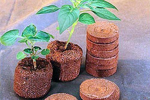 таблетки из кокосовой стружки