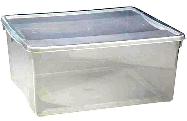 контейнер для рассады