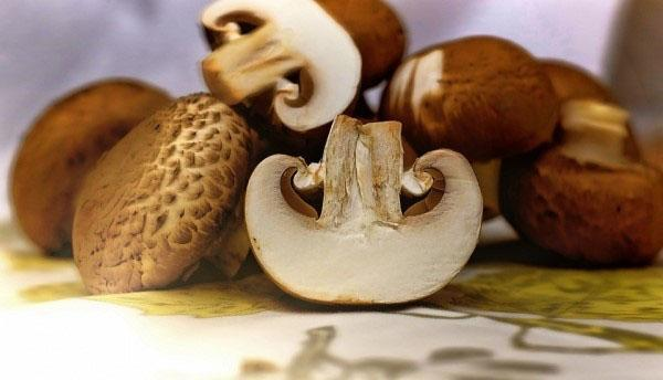 подготовить грибы