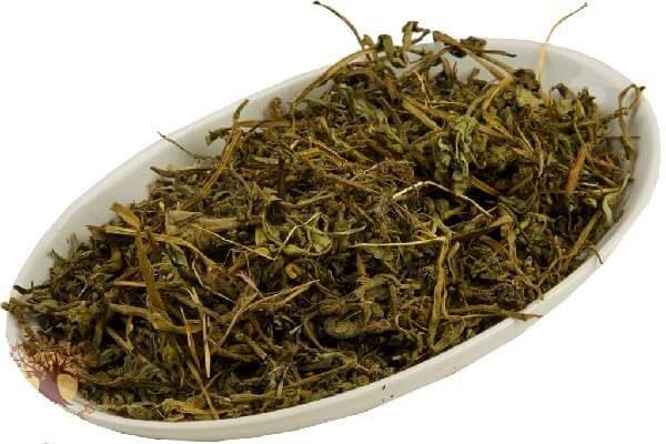 сухая трава медуница