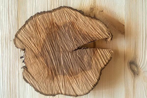 древесина абрикоса
