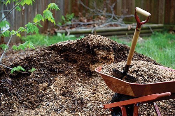 компостная яма своими руками