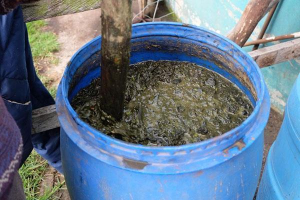 приготовление жидкого коровяка