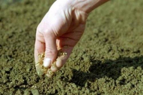 посев с песком