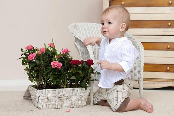 цветы и ребенок